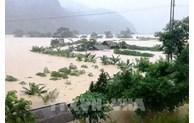 Catastrophes naturelles: Aide de plus de 89 milliards de dongs pour 5 provinces