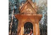 Cinq pagodes du Sud-Ouest à l