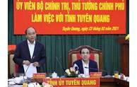 Tuyen Quang nécessite le développement de l'industrie du bois