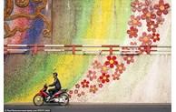 Des photos prises au Vietnam se distinguent aux Travel Photographer of the Year contest