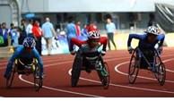 Le Vietnam organisera les 11e Jeux Para de l