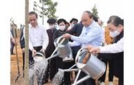 Le PM lance le programme de plantation d