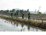L'armée joue un rôle important dans la lutte contre le COVID
