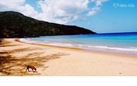 La plage de Dam Trau (Con Dao) parmi les plus belles du monde