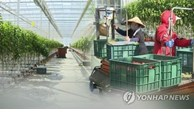 Les travailleurs vietnamiens bénéficient d