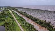Delta du Mékong: développement durable pour s