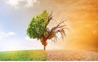 Changements climatiques: l