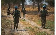 ONU: Le Vietnam appelle à promouvoir une solution rapide et pacifique à la question d'Abyei