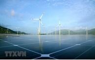 Mise en opération de la plus grande centrale éolienne du Vietnam