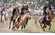 La course de chevaux de Bac Ha reconnue patrimoine immatériel national