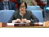 Le Vietnam apprécie les contributions de la MINUAD à la situation au Darfour