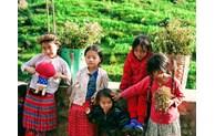 Le voyage à la découverte du Vietnam d