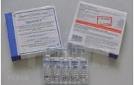 La communauté vietnamienne en Russie au chevet du Fonds de vaccins anti-COVID-19