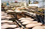 Les exportations vers la Belgique en hausse de plus de 55%