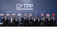 Le Vietnam est prêt à partager ses informations et ses expériences sur l'adhésion au CPTPP