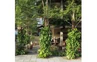 Un café vert à Hôi An apparaît sur le magazine américain Archdaily
