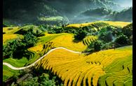 Le Vietnam dans le top des premières destinations en octobre