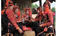Renforcement de soutien des moyens de subsistance pour les paysans ethniques