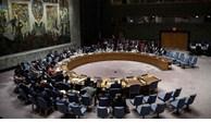 Le Vietnam exhorte les pays à régler les questions sur les transferts illégaux d'armes légères