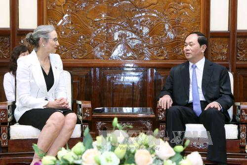 国家主席陈大光会见前来礼节性拜会的各国驻越大使
