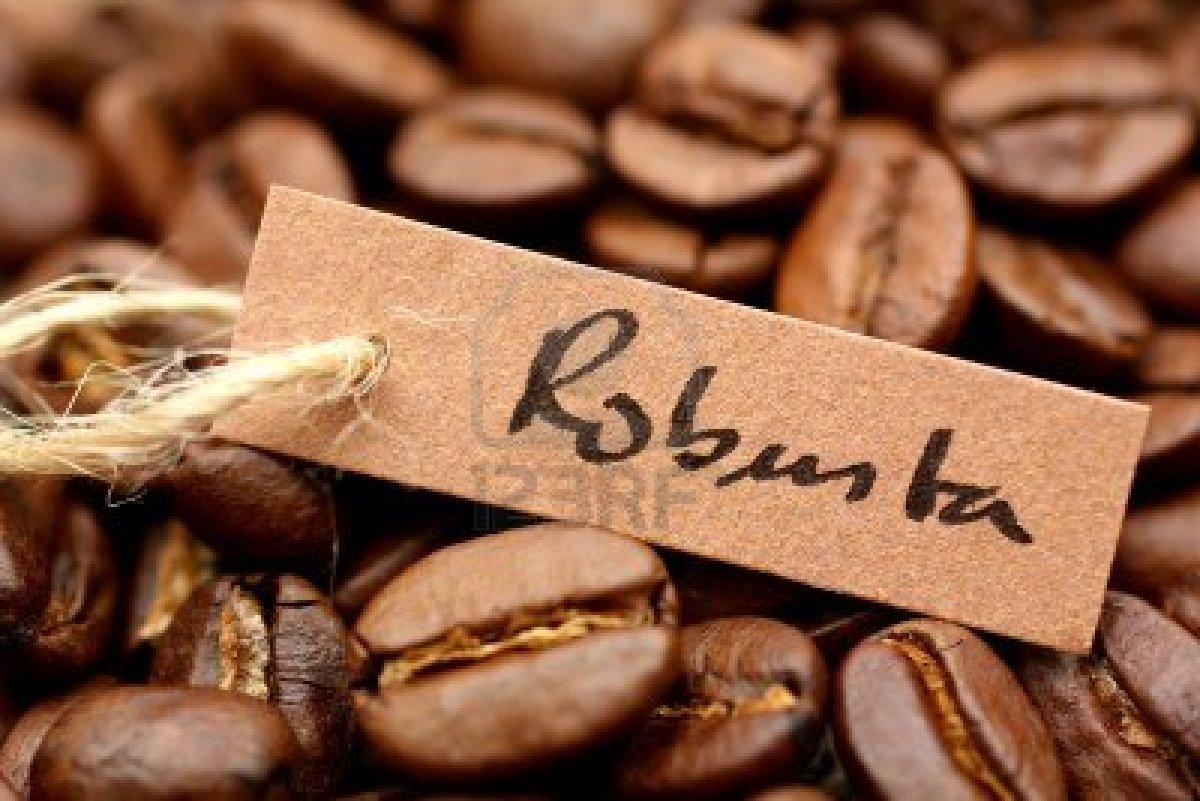 巴西或将进口越南罗布斯塔咖啡
