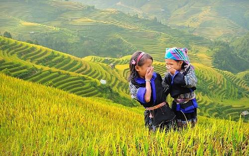 越南北部被评为全球最便宜的旅游目的地