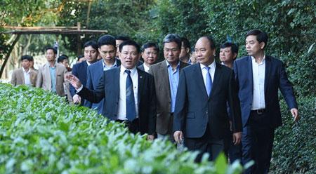 越南政府总理阮春福前往金莲遗迹区向胡志明主席敬香献花
