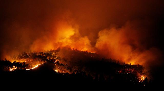 葡森林火灾死亡人数升至62人 政府宣布进入紧急状态