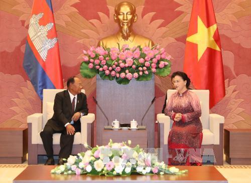 国会主席阮氏金银同柬埔寨国会主席韩桑林举行会谈