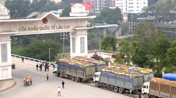 越中蔬果进出口促进论坛举行