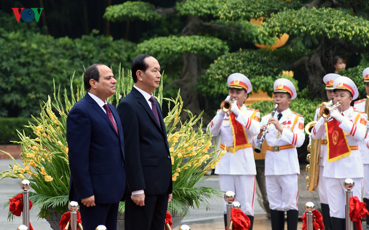 国家主席陈大光主持埃及总统访越欢迎仪式