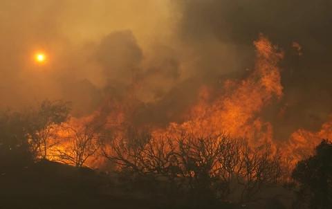 美国加州森林大火已造成21人死亡