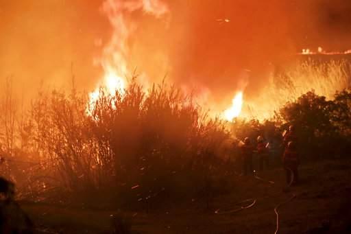 葡萄牙森林大火死亡人数升至41人