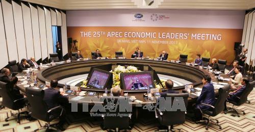 2017年APEC领导人会议《岘港宣言》:打造全新动力 开创共享未来
