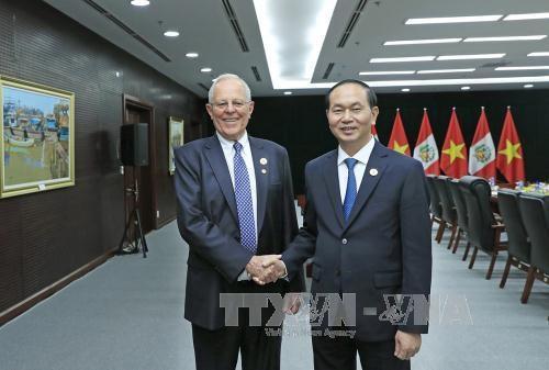 越南重视与秘鲁加强友好合作关系