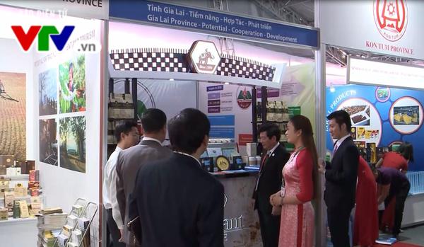 """""""越南-可信赖和富有潜力的贸易伙伴""""展览会正式开展"""