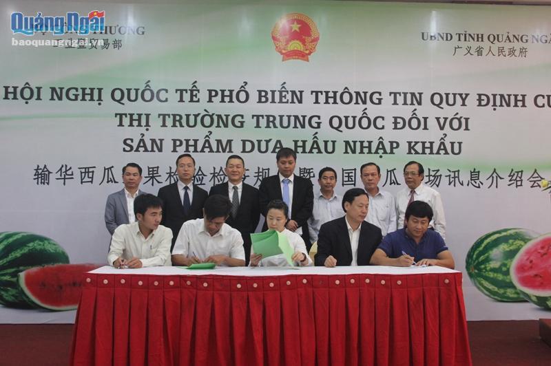越中企业签订西瓜收购原则性合同