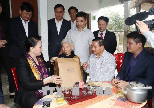国会主席阮氏金银率团赴何静省调研