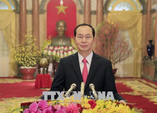 国家主席陈大光发表2018戊戌年新年贺词