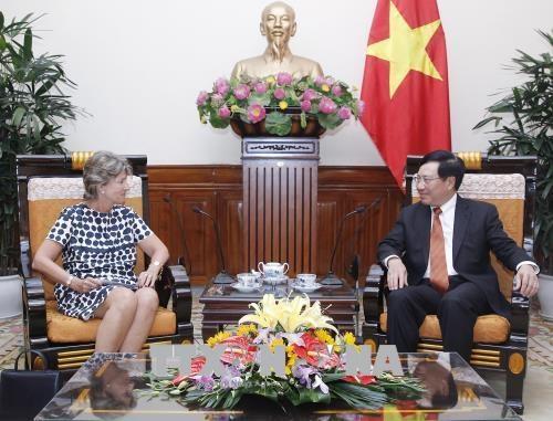 政府副总理兼外长范平明会见西班牙驻越大使