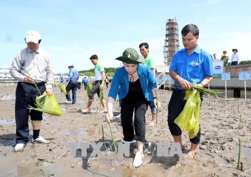 国会主席阮氏金银出席在国家零公里标志举行的植树活动