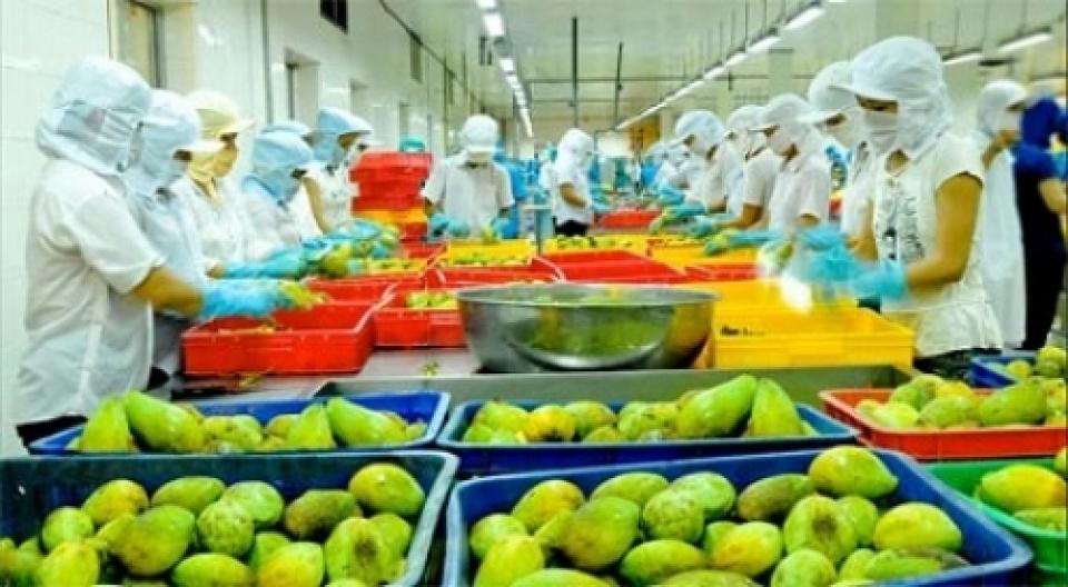 2018年前四个月越南蔬果出口额同比增长近30%