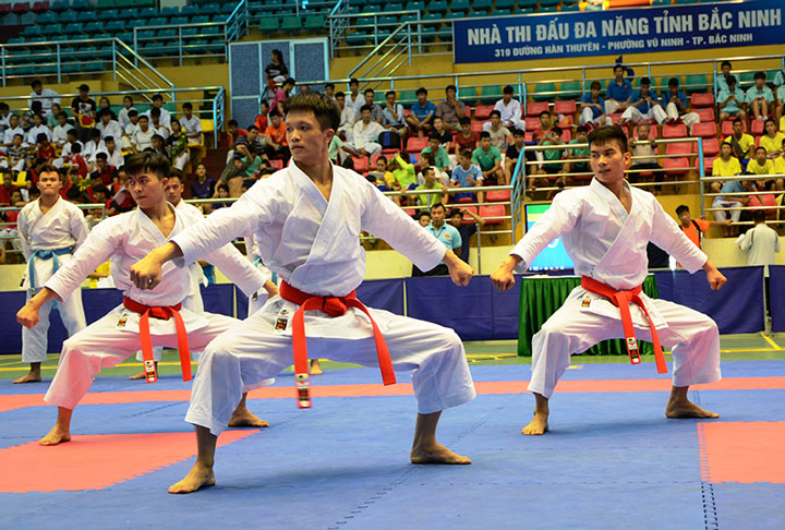 北宁省运动员在3个国际体育赛事中夺得11枚奖牌