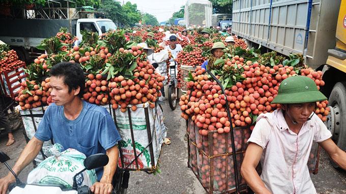 越南荔枝备受马来西亚消费者青睐