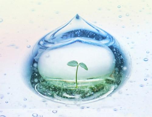 越南以色列水资源周于7月9日至13日举行