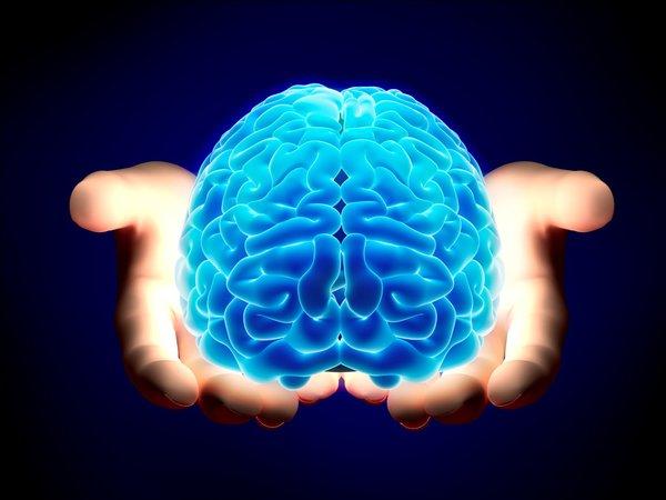 美研究发现导致悲观的脑区