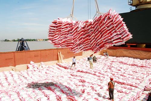 2018年前8个月中国成为越南最大的大米出口市场