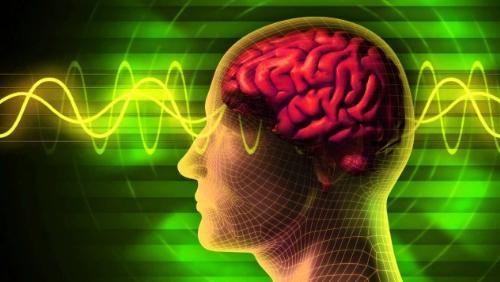 研究揭示双语转换时的大脑活动变化