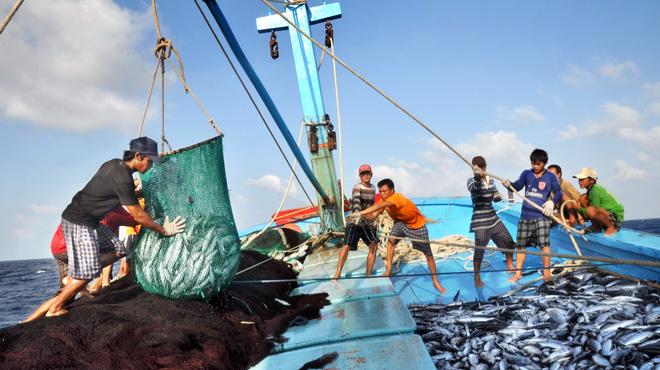 韩国和越南加强渔业管理经验交流