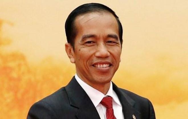 印尼总统与夫人将对越南进行正式访问